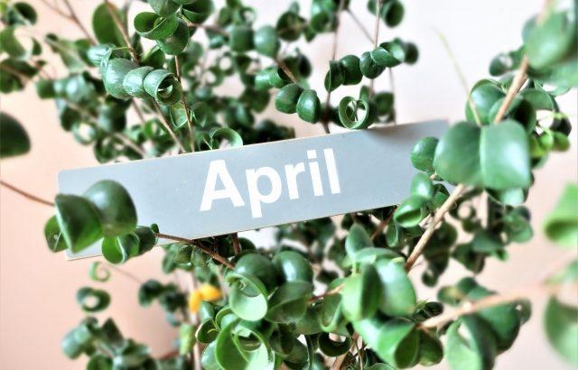2019年4月 月次運用レポート、時はあッと言う間に流れて平成は終わり、リスク資産は意外と堅調に増えていました。