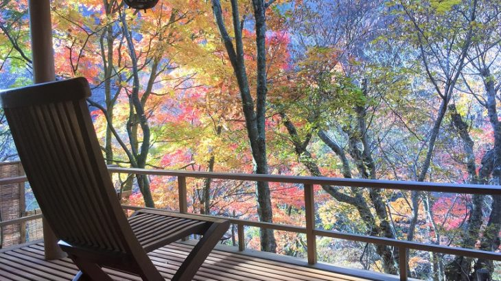 【配当金で旅行しよう】晩秋の信州旅行「緑霞山宿 藤井荘」で心身を癒す。